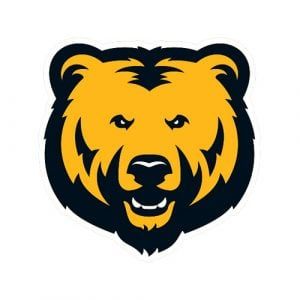 Bruins Team Logo