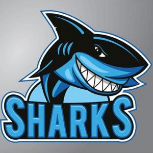 Sharks Team Logo