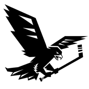 Ravens Team Logo