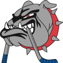 Ice Dogs Logo